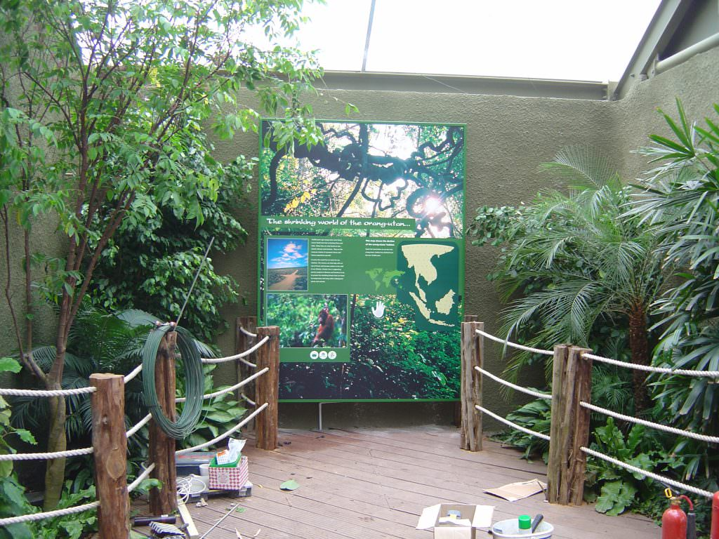 This interpretation panel set in a zoo is wall mounted and explains all about the shrinking world of the orang-utan
