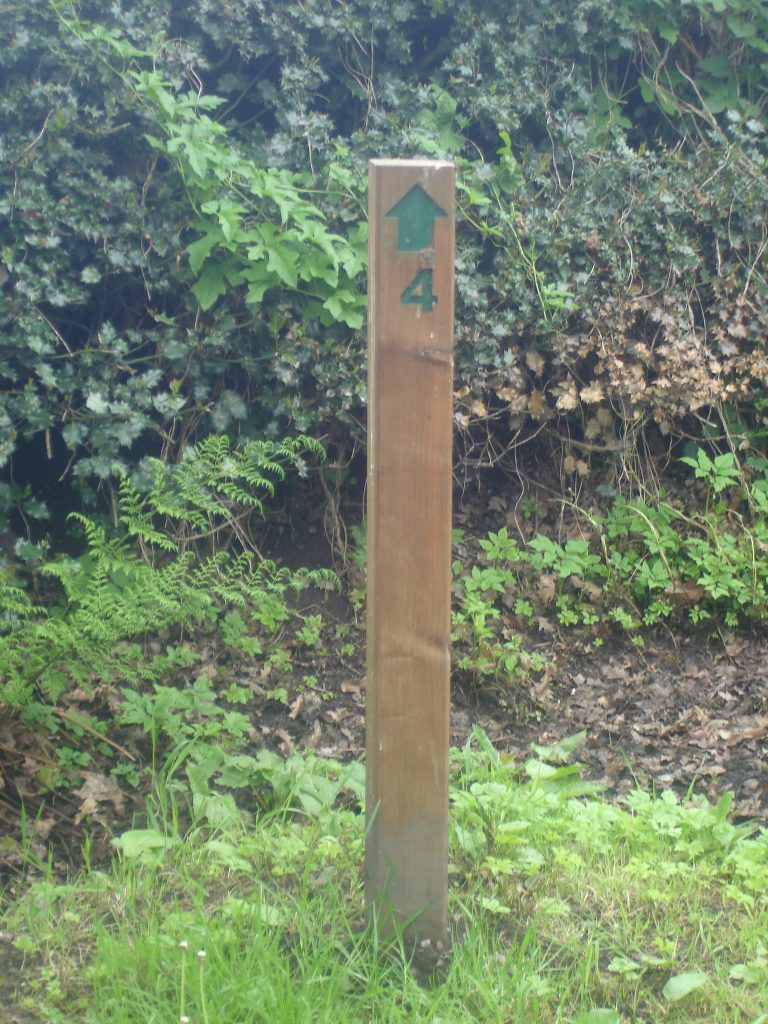 A trail bollard produced in treated softwood. One face of the bollard has a routed arrow and number – both painted green