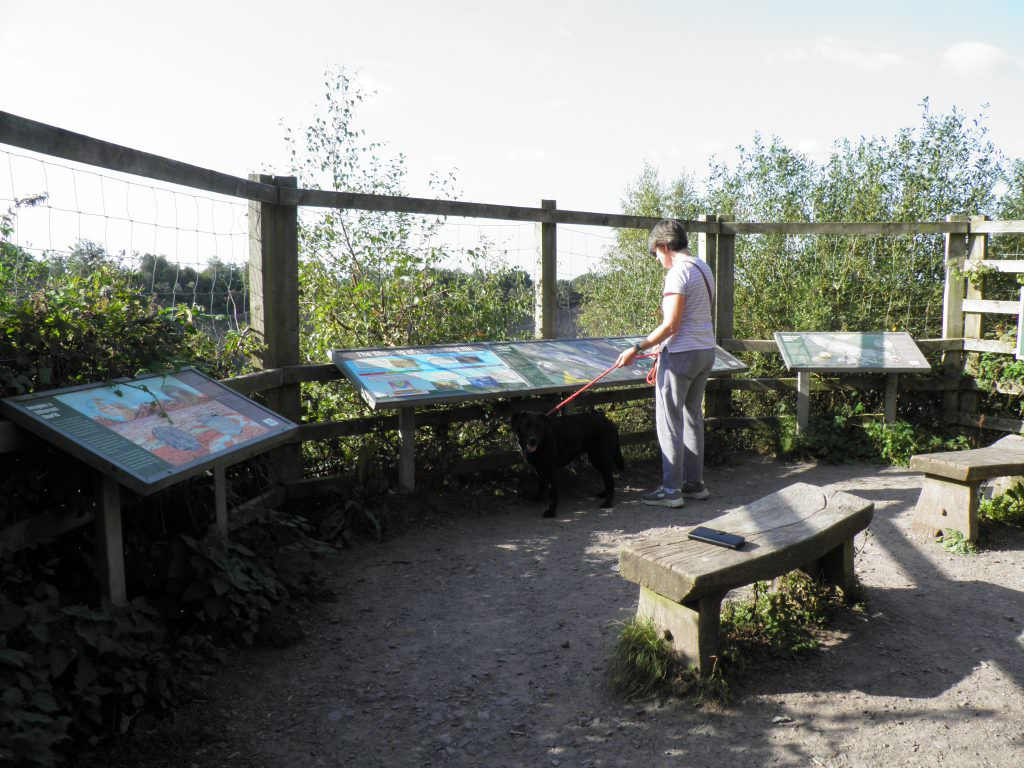 A series of a geology and natural history themed interpretation panels set in steel lectern frame. Located in a viewing platform above a working quarry.