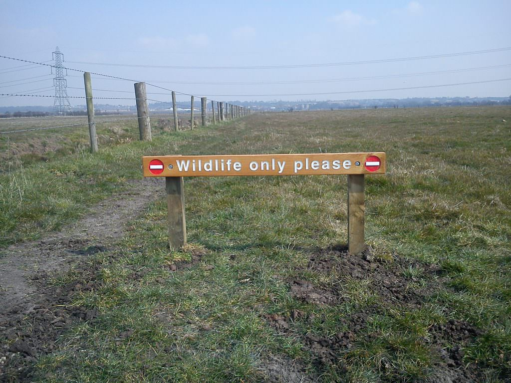 A routed timber signs with indented text, painted white and posts.  Reading 'Wildlife Only Please'.  Produced in Cedar.