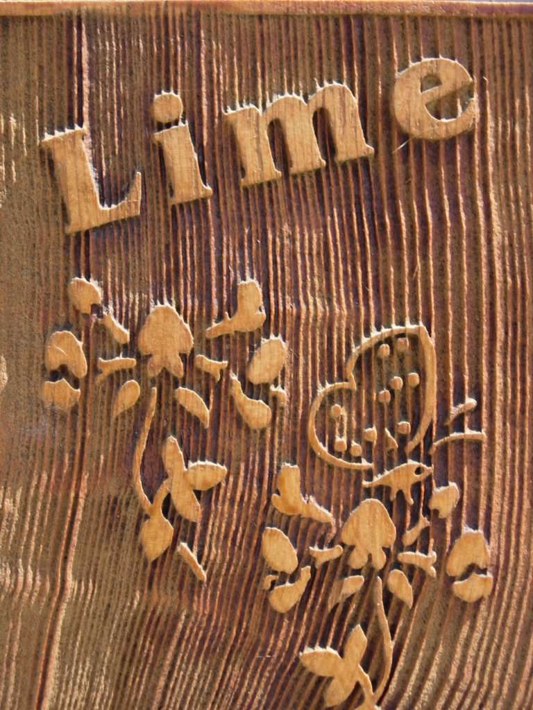 Close up of a tactile, sandblasted cedar sign illustrating the tactile nature of text and illustrations and the grain effect of timber sandblasting