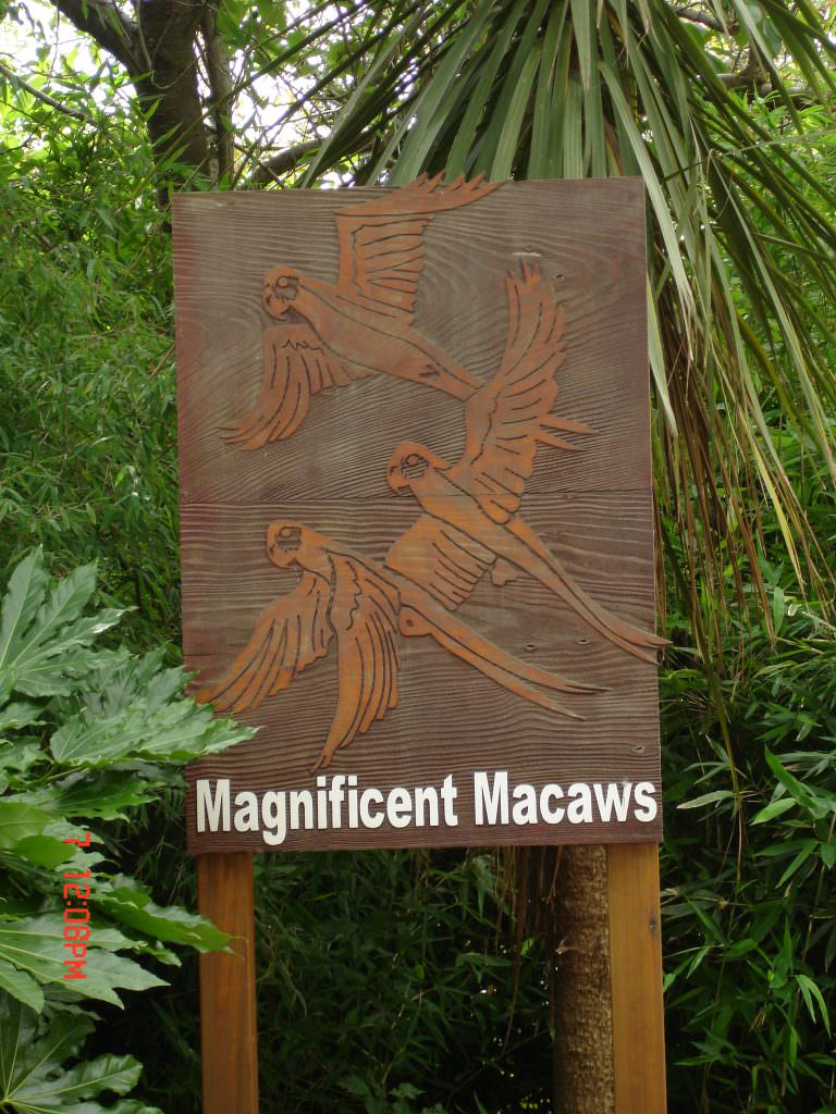 Tactile reserve entrance sign at Chester Zoo for Macaws enclosure.  Produced as sandblasted timber and post mounted